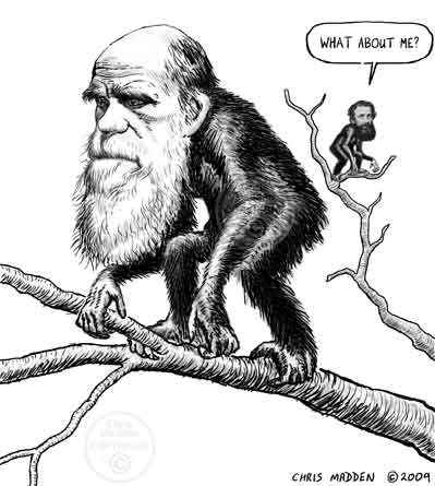 caricature of Darwin and Wallace with Wallace being depicted as a much smaller figure saying - what about me